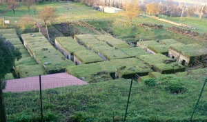 Necropoli etrusca del Crocifisso del Tufo